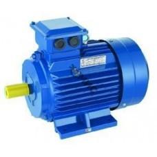 Электродвигатель АИР 63 В2У1 0,55/3000 IM1081 (лапы), 220/380  РФ